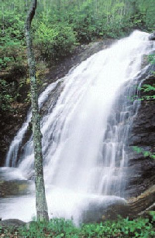 #25. Wash Hollow Falls