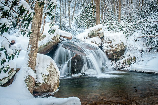 Margarette-Falls-Trail-Greeneville-TN.jpg