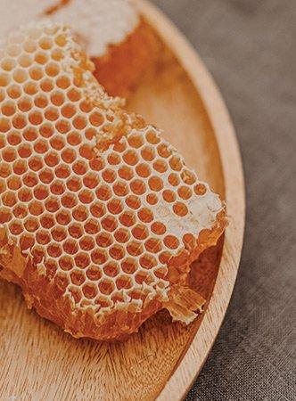 Honeycomb---Photo-by-Anita-Austvika-on-Unsplash.jpg