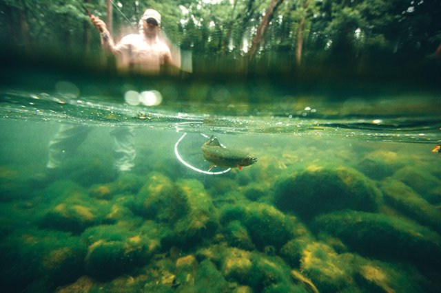 NCPN-Watauga-River-Flyfishing-Underwater-View.jpg