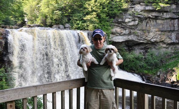 Shih Tzus at the Falls