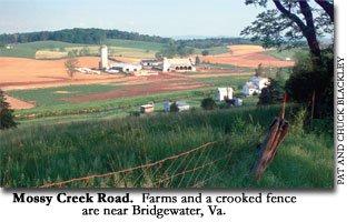 Mossy Creek Road