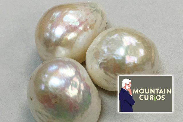 Freshwater-Pearls---photo-by-James-S-HPt.jpg