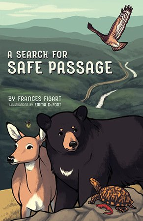A-Search-for-Safe-Passage-cover.jpg