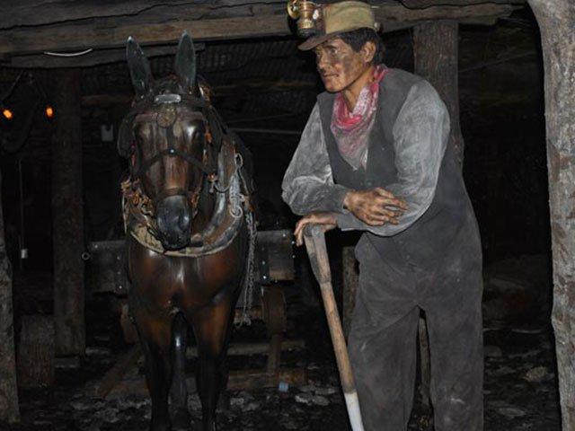 Coal Mining Tour