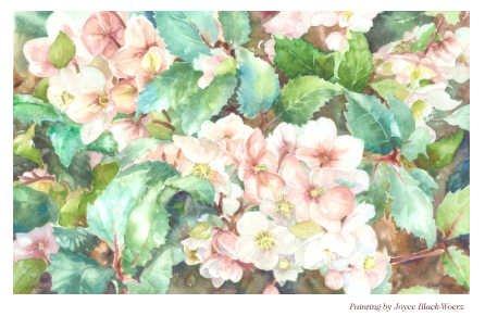 BMBC Fall Garden Sale Painting.jpg