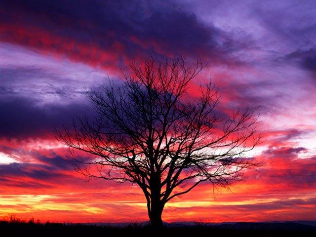 Shenendoah National Park Sunset