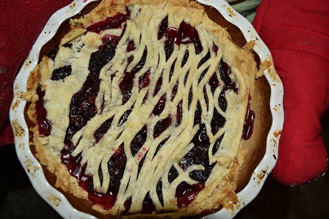 2.-Wild-Blackberry-Pie,-hot-from-oven.jpg