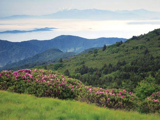 Sky-High: The Best High-Altitude Getaways in the Blue Ridge