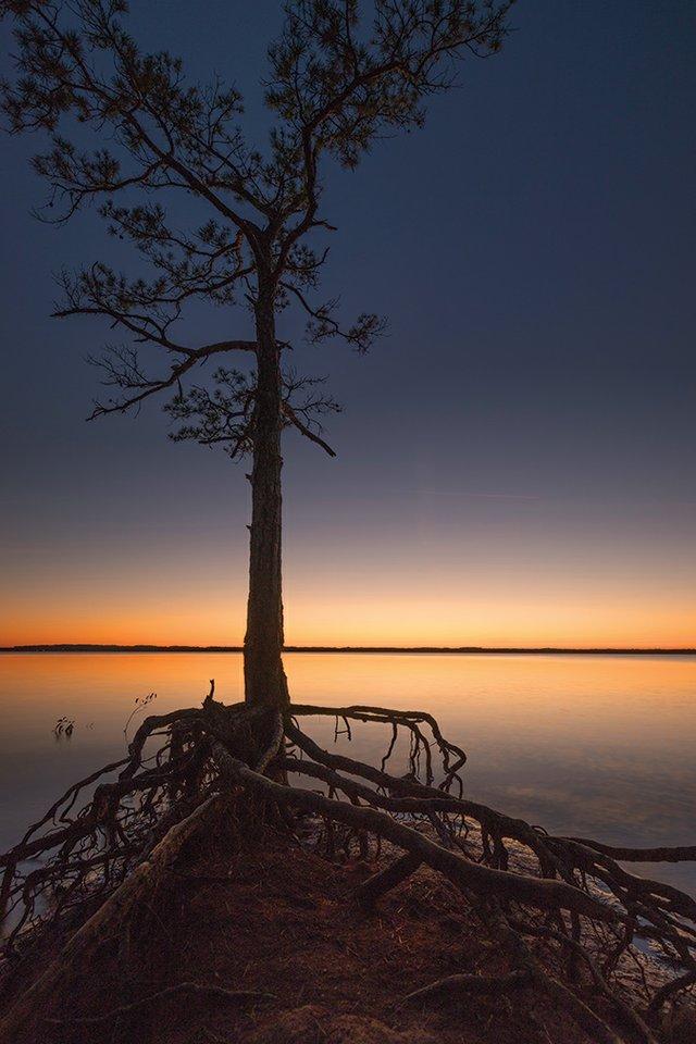 LakeHartwell-singingPinesRec_SC_Bryan-Powell.jpg