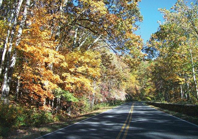 Mike-Kendrick---Virginia-backroads-in-autumn---Photo-by-Mike-Kendrick.jpg